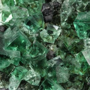 Fluorite, Rogerley, with Galena